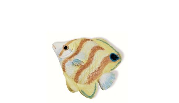 Siro SH025 - MC - Multi-colour - Fish