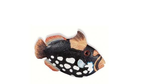 Siro SH026 - MC - Multi-colour - Fish