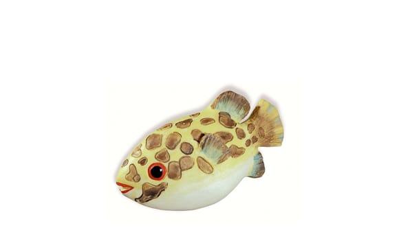 Siro SH027 - MC - Multi-colour - Fish
