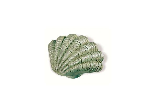 Siro SH028 - MC - Multi-colour - Seashell