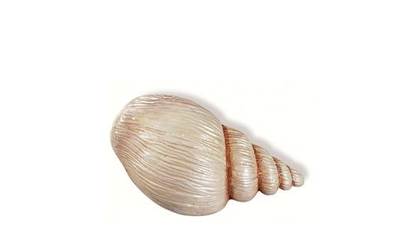 Siro SH029 - MC - Multi-colour - Seashell